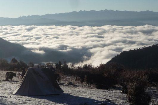 Druk-Path-Trekpic